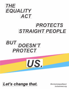 """The Equality Act Protects Straight People, But Doesn't Protect Us. A Pan Flag stripe is behind the word """"Us""""."""